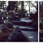 plants graveyard...
