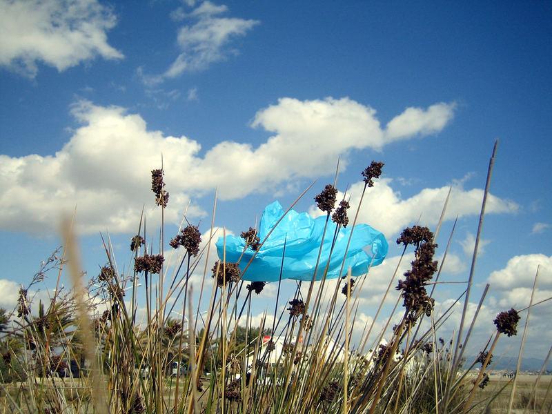 Plastic cloud
