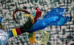 plastikflaschenblüte
