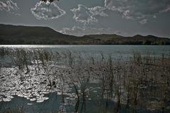 Plata en el Lago