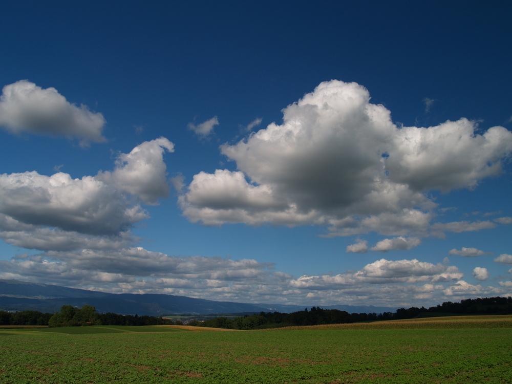 Plateau du Mont-Vully