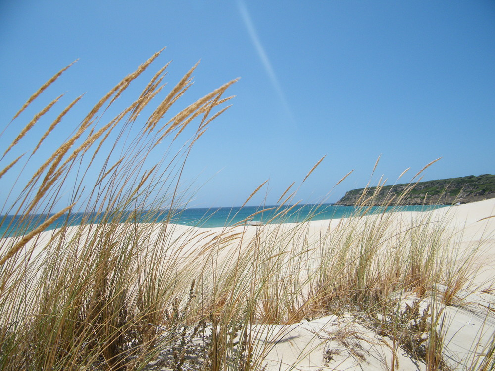 Playa Bolonia (Cádiz)