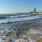 Playa de la Mar Bella. Barcelona. Enero 2010.