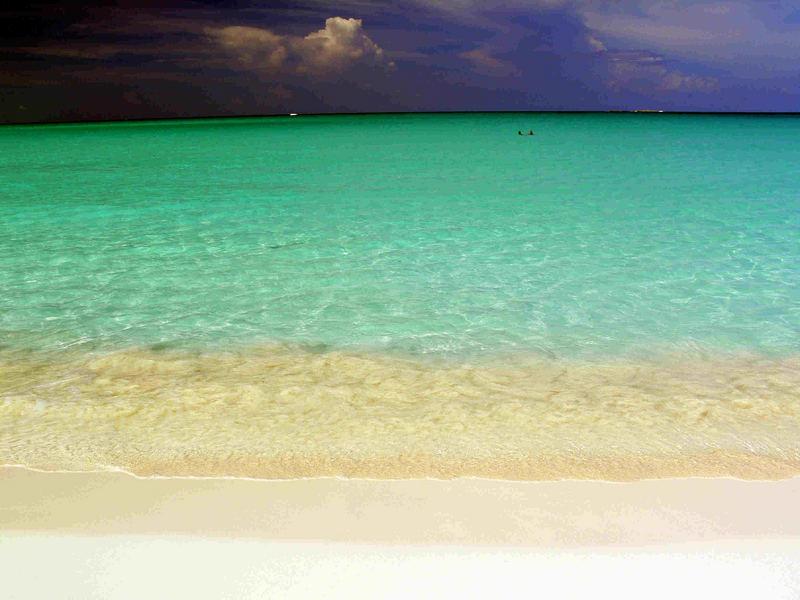 playa paradiso - cayo largo - cuba
