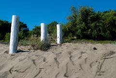 playa silvestre