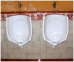 plaza de torres toilet sevilla