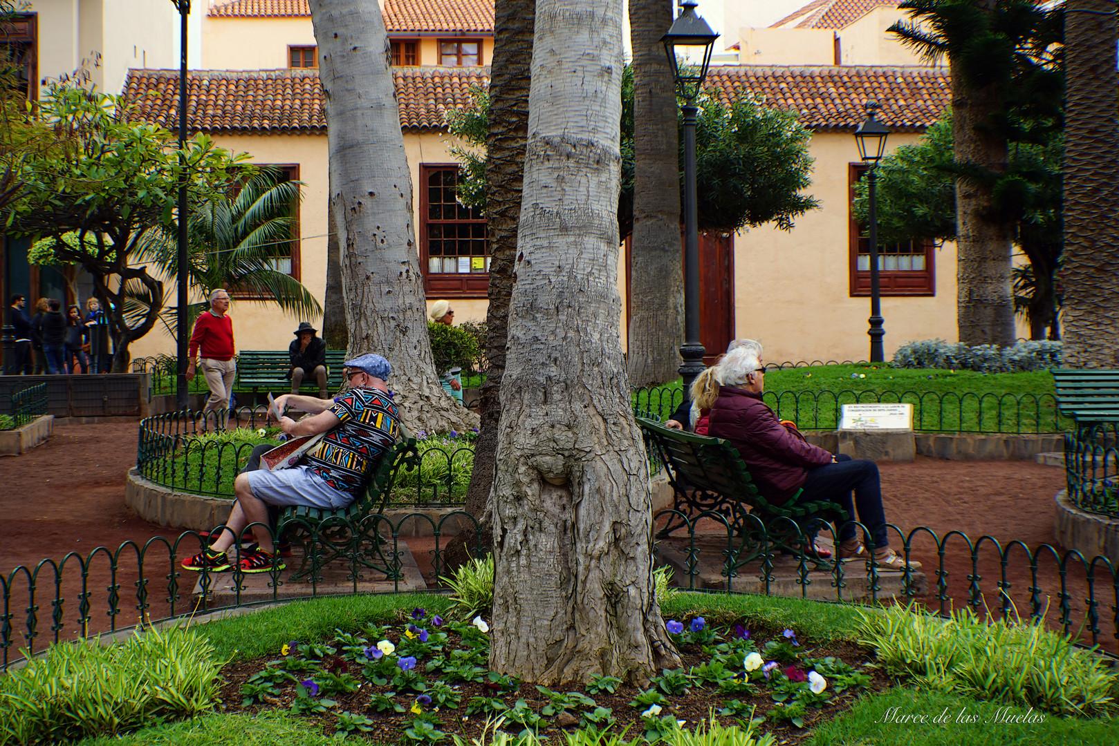 Plaza La Iglesia  Puerto de la Cruz.