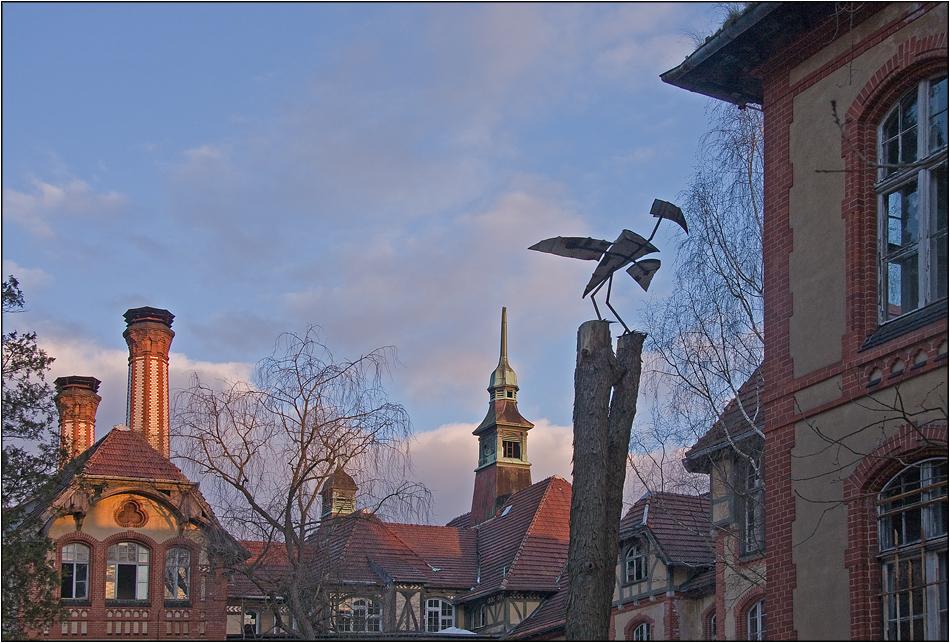Pleitegeier über Beelitz
