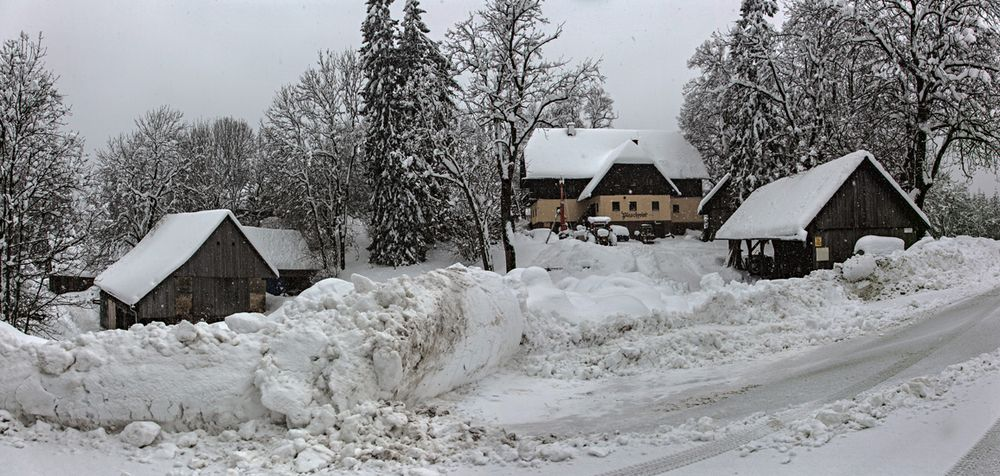 Pleschwirt bei leichtem Schneefall!