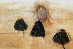 Plissee-Röckchen auf Holz