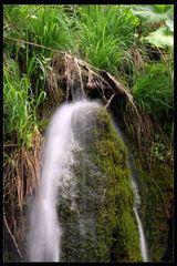 Plitvicer Seen 11