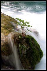 Plitvicer Seen 5