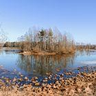 Plothener Teich Ende Februar