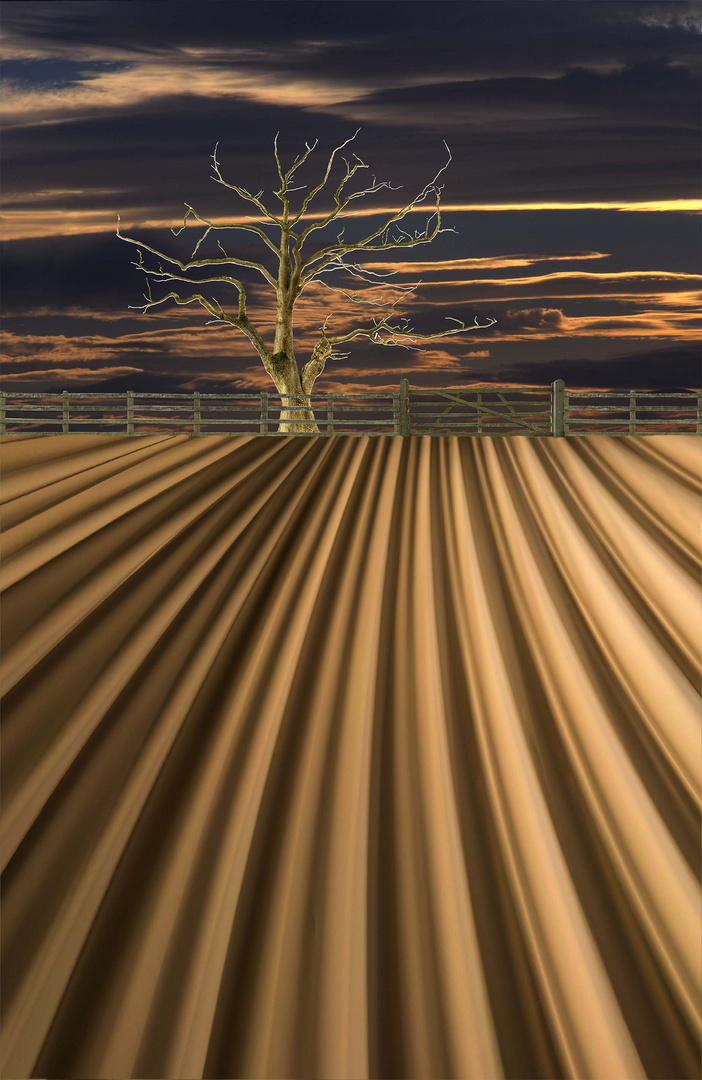 ploughed field simulation