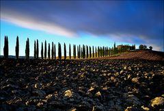 Plowed field in Tuscany