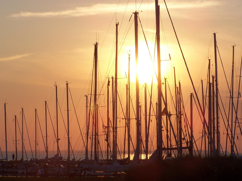 Poeler Abendsonne