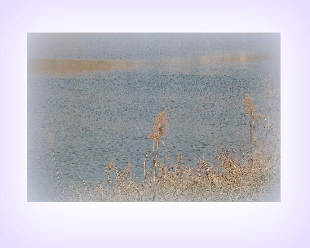 Poesia del fiume...a primavera!