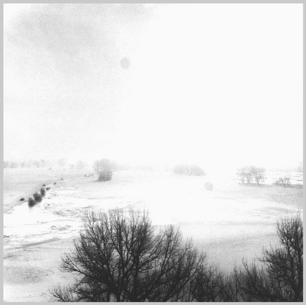 Poesie der Elbe 2