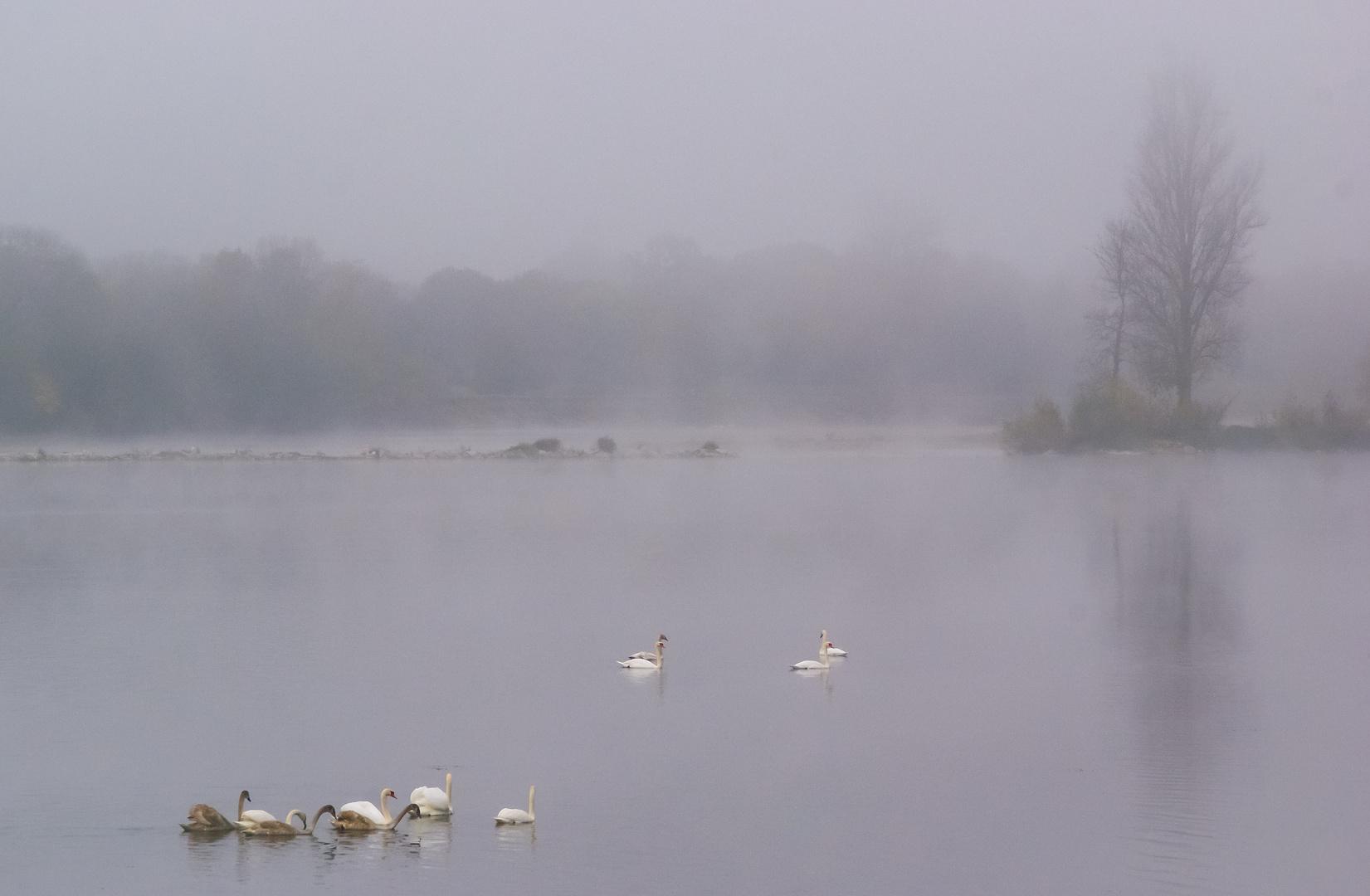 Poésie sur la Loire