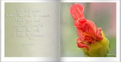 Poesiealbum ...