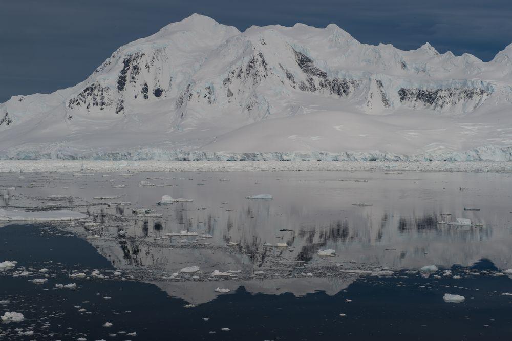 Poit Wild, Antarktis   DSC_0649