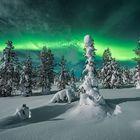 [ … polar night ]