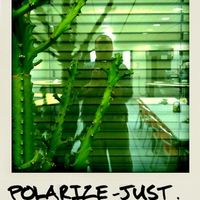 polarize-just.for.fun
