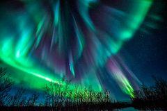 Polarlicht Extem