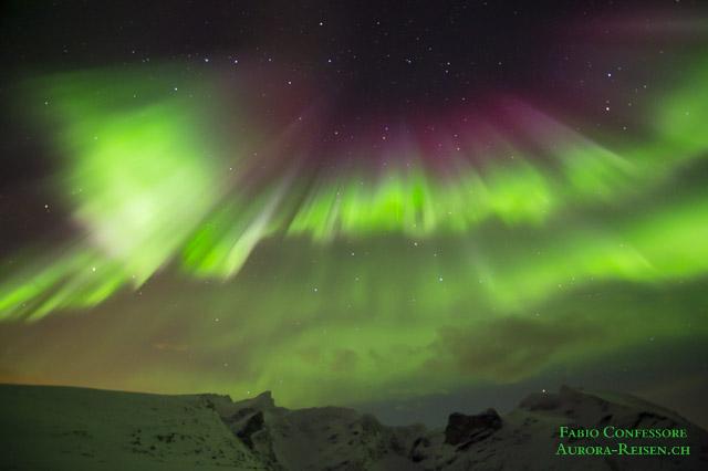 Polarlicht-Vorhang mit grossen Wagen
