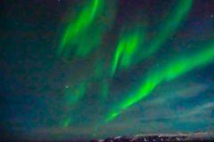 Polarlichter bei Kirkenes
