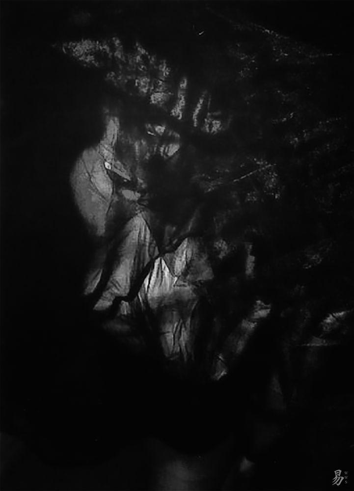 polaroid.art