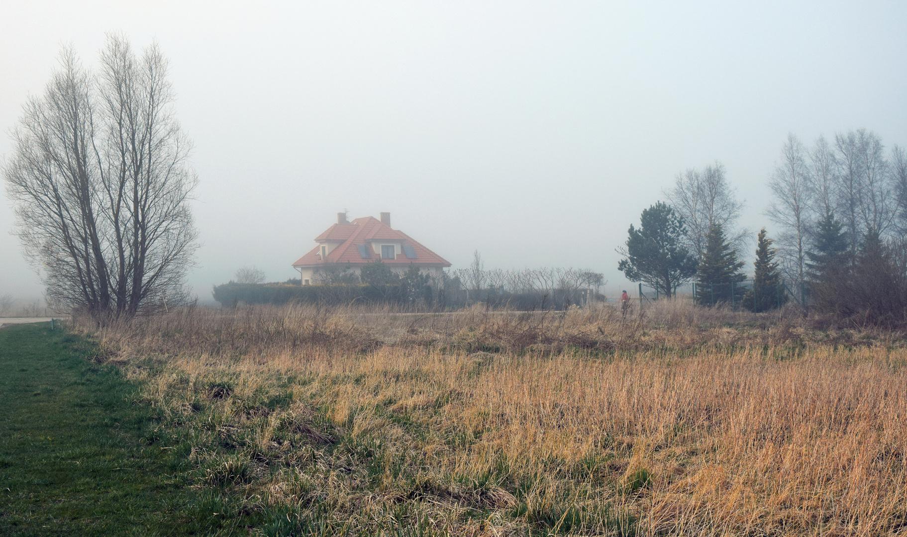 POLEN GRZYBOWO - Spaziergang im Nebel -