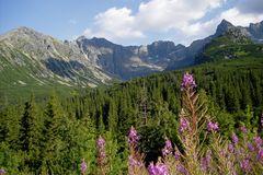 Polish Tatra Mountains I