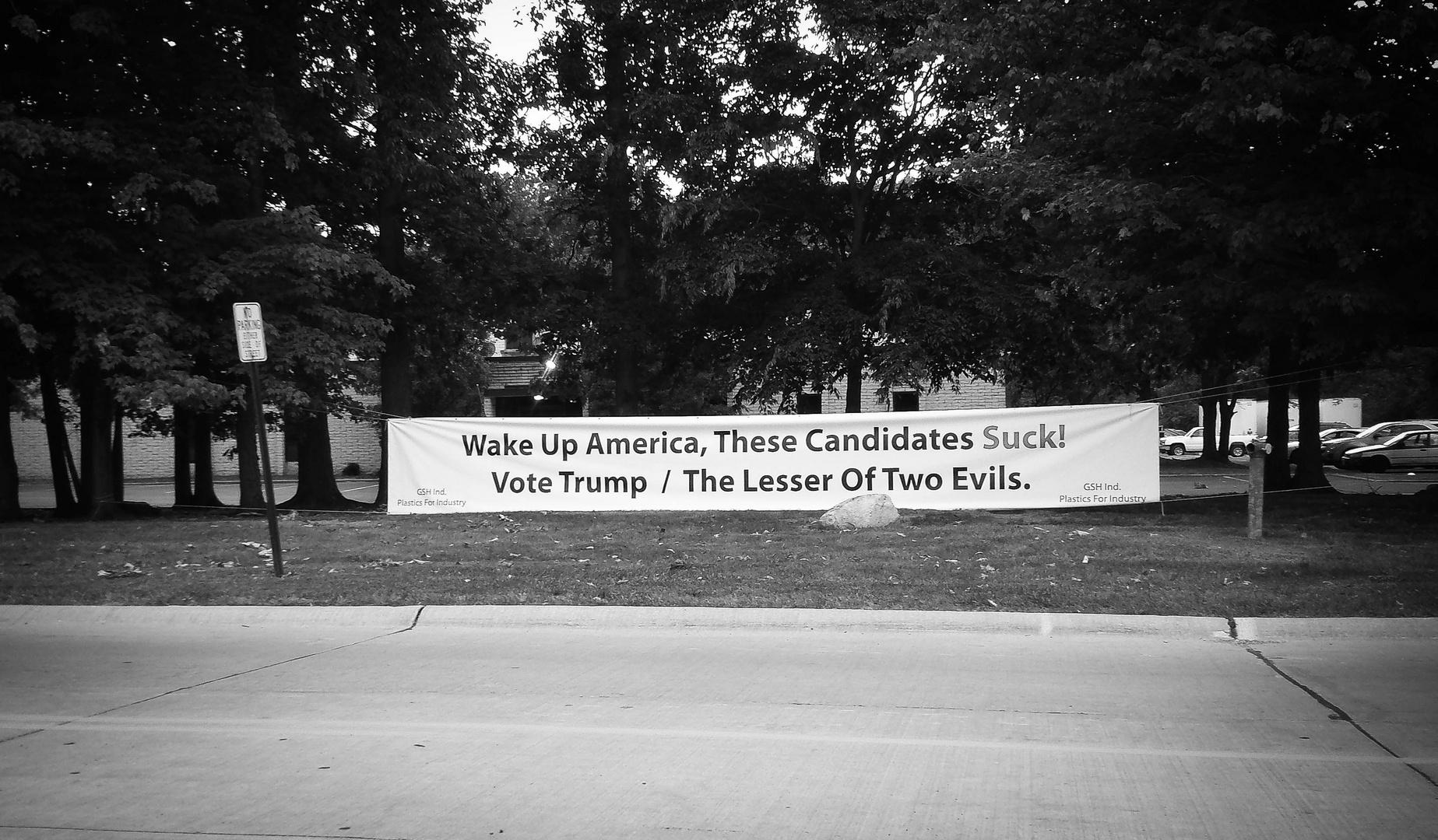 Politics - Lesser of two evils