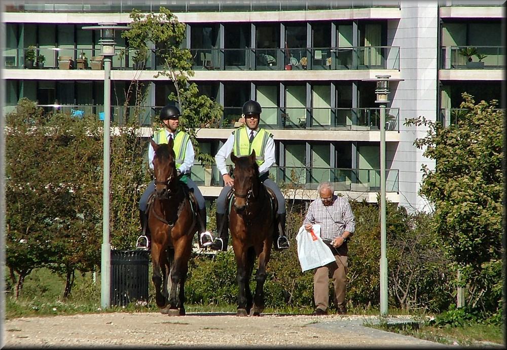 Poliziotti a   cavallo