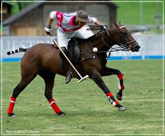 Polo Goldcup Gstaad