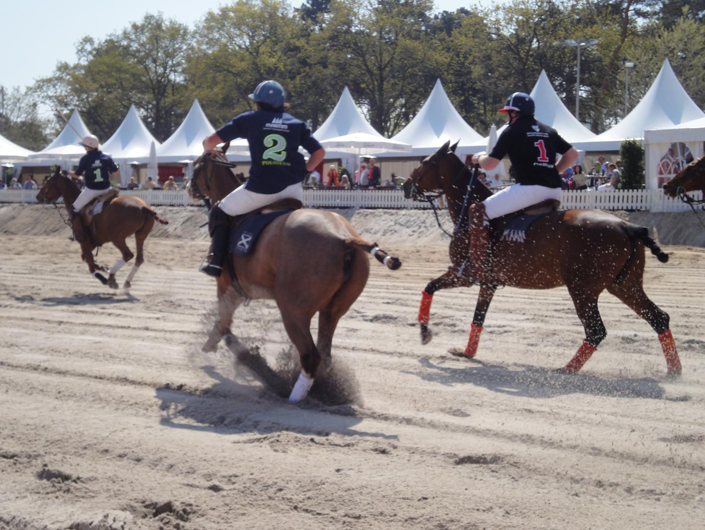 polo on horses