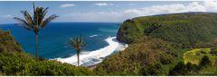 Polulo Valley Lookout - Big Island