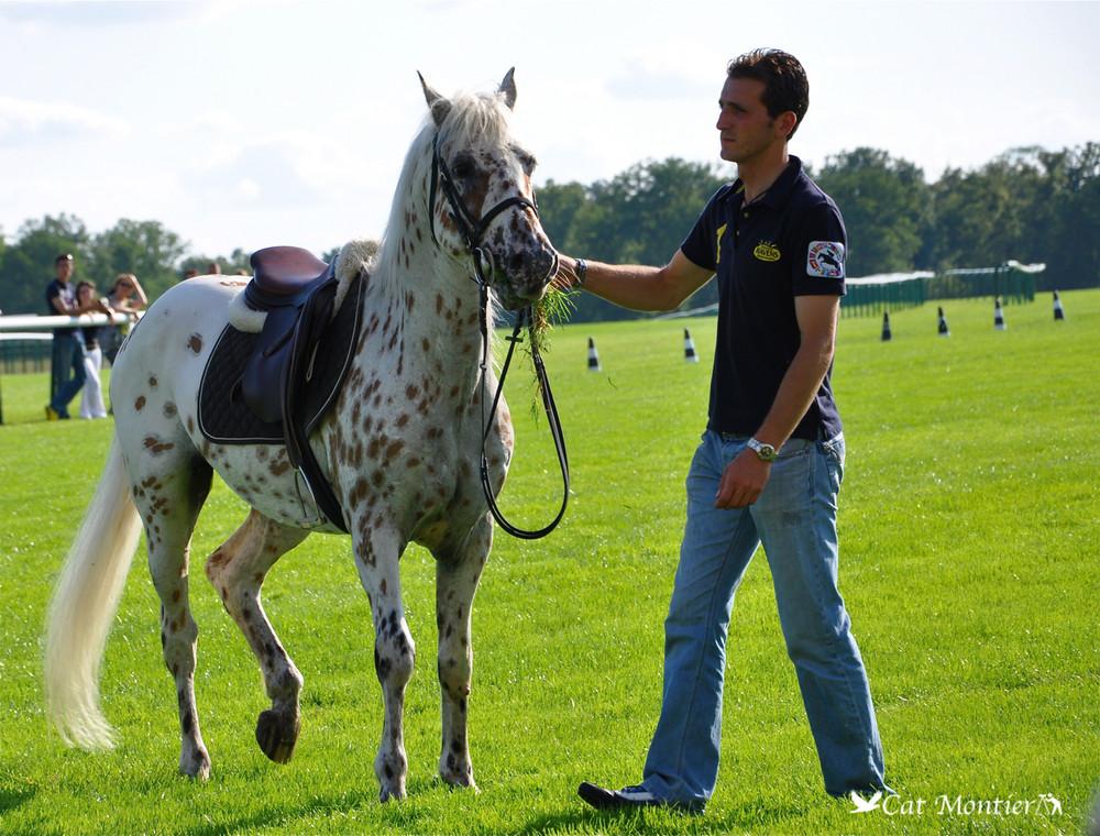 poney gagnant
