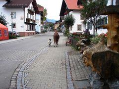Ponny und Ziege auf Stadtbummel ;)