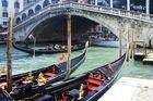 pont de rialto, canale grande, venedig.