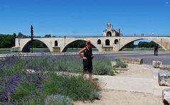 Pont Saint - Bénézet ...