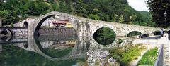 Ponte della ...