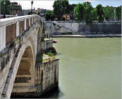 ... Ponte Sisto ...