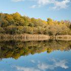 Pontel-Teich bei Ellrich