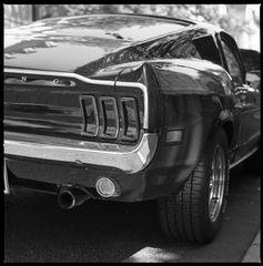 Pony Car I