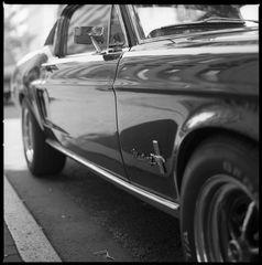 Pony Car II