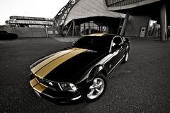 Pony Car [Reload]