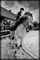 Ponyhof - Fest 4, Juli 2011