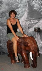 Ponyreiten war gestern - heut ist Elefantenreiten angesagt